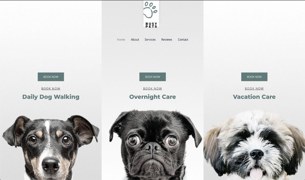 Pet Care 2